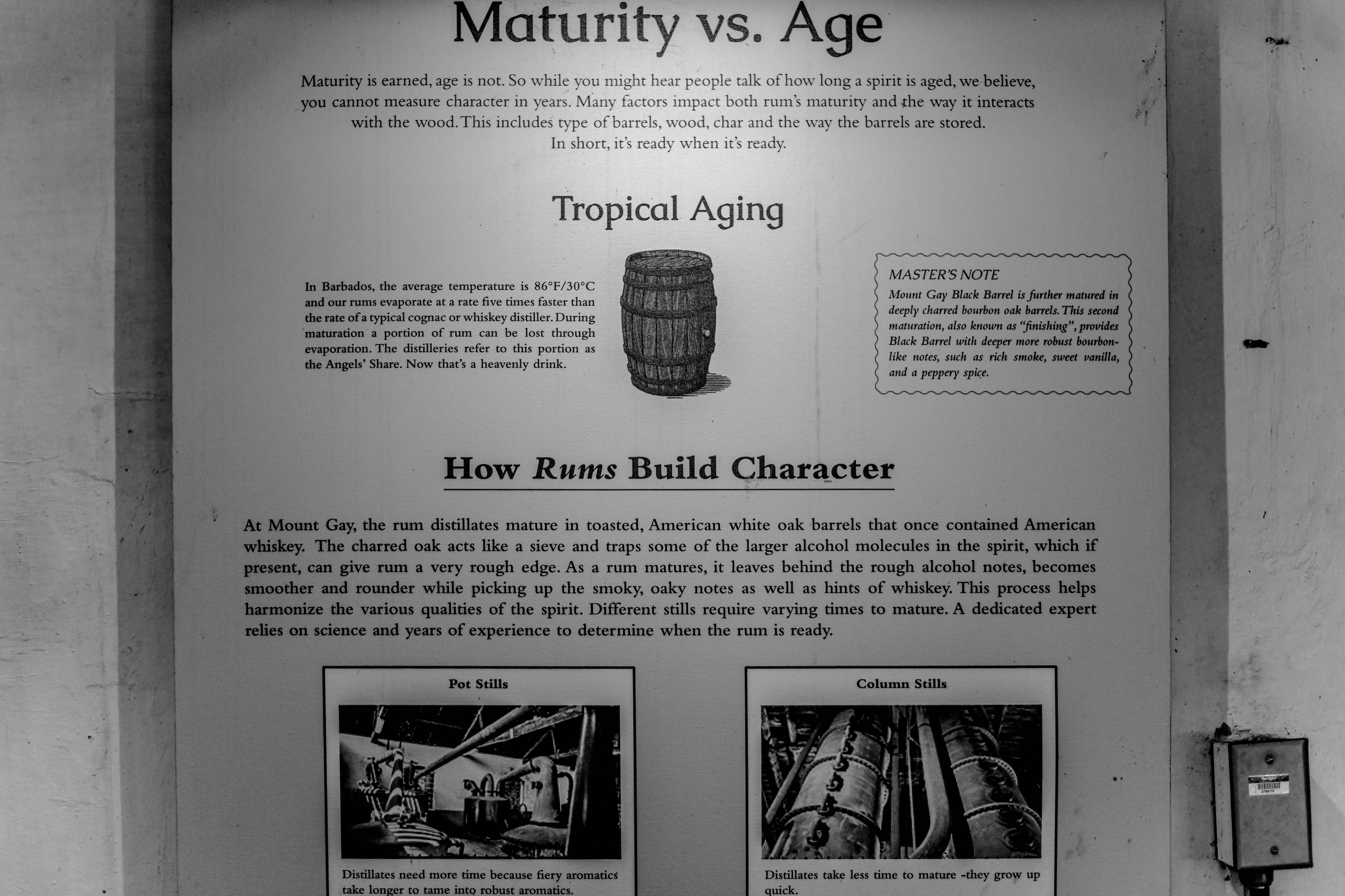 , A Beginners Guide to Mount Gay Rum